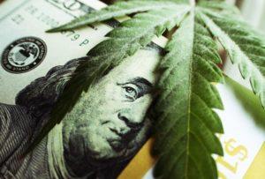 Marijuana Consulting